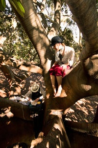Everything Tastes Better With Company.. in Trees