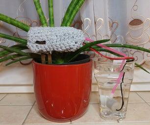 PlantCare Best DIY Present for Mothers