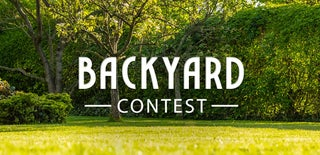 Backyard Contest