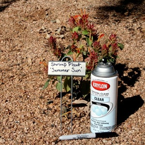 Gardening Tip 4 Out of 16