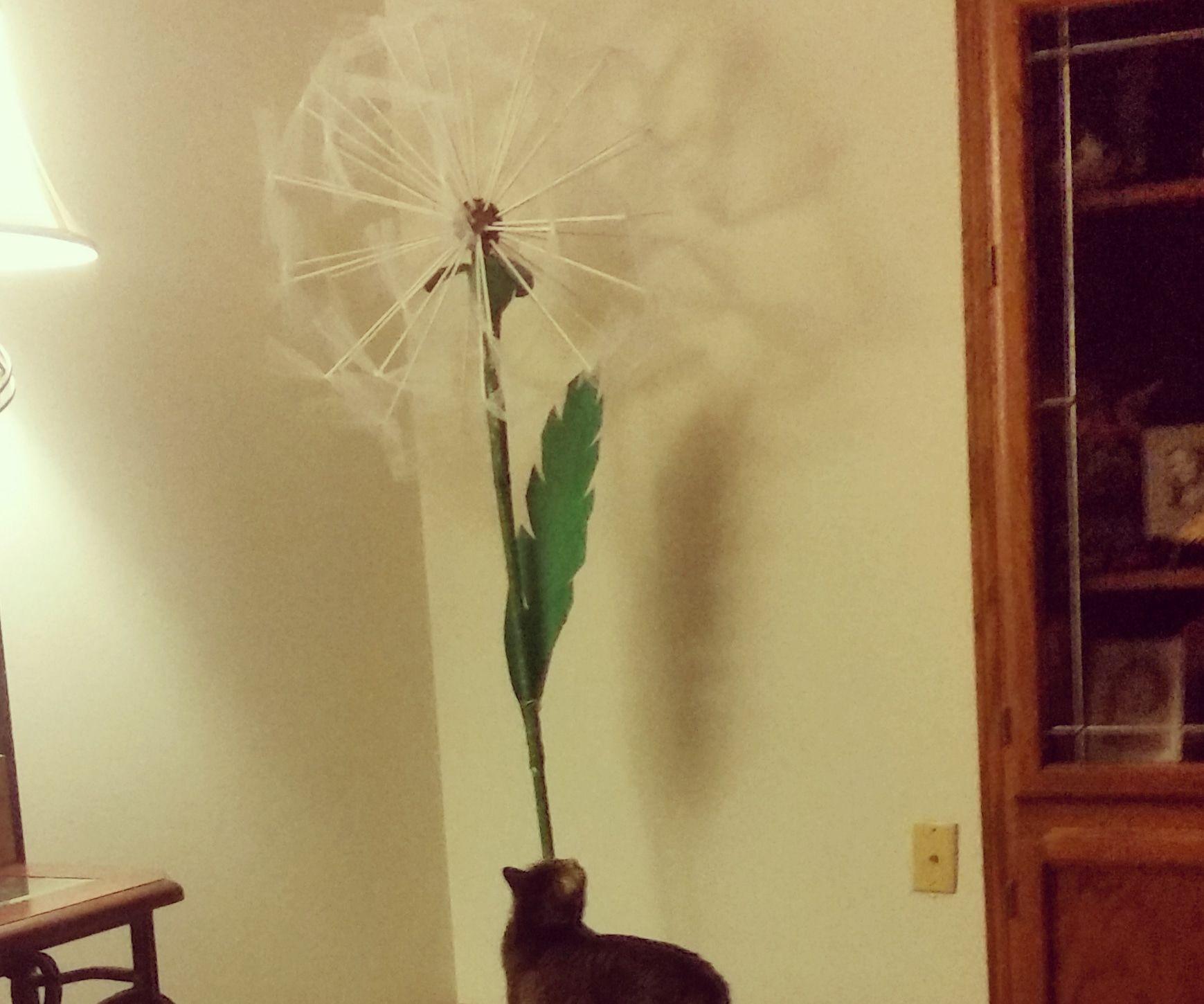 Larger Than Life Dandelion