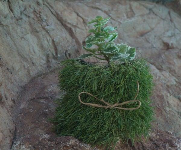 Lawn Mason Jar Planter