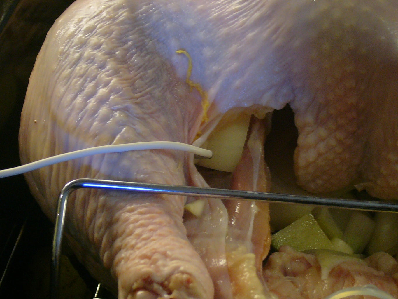 Statistical Analysis of Turkey Cooking