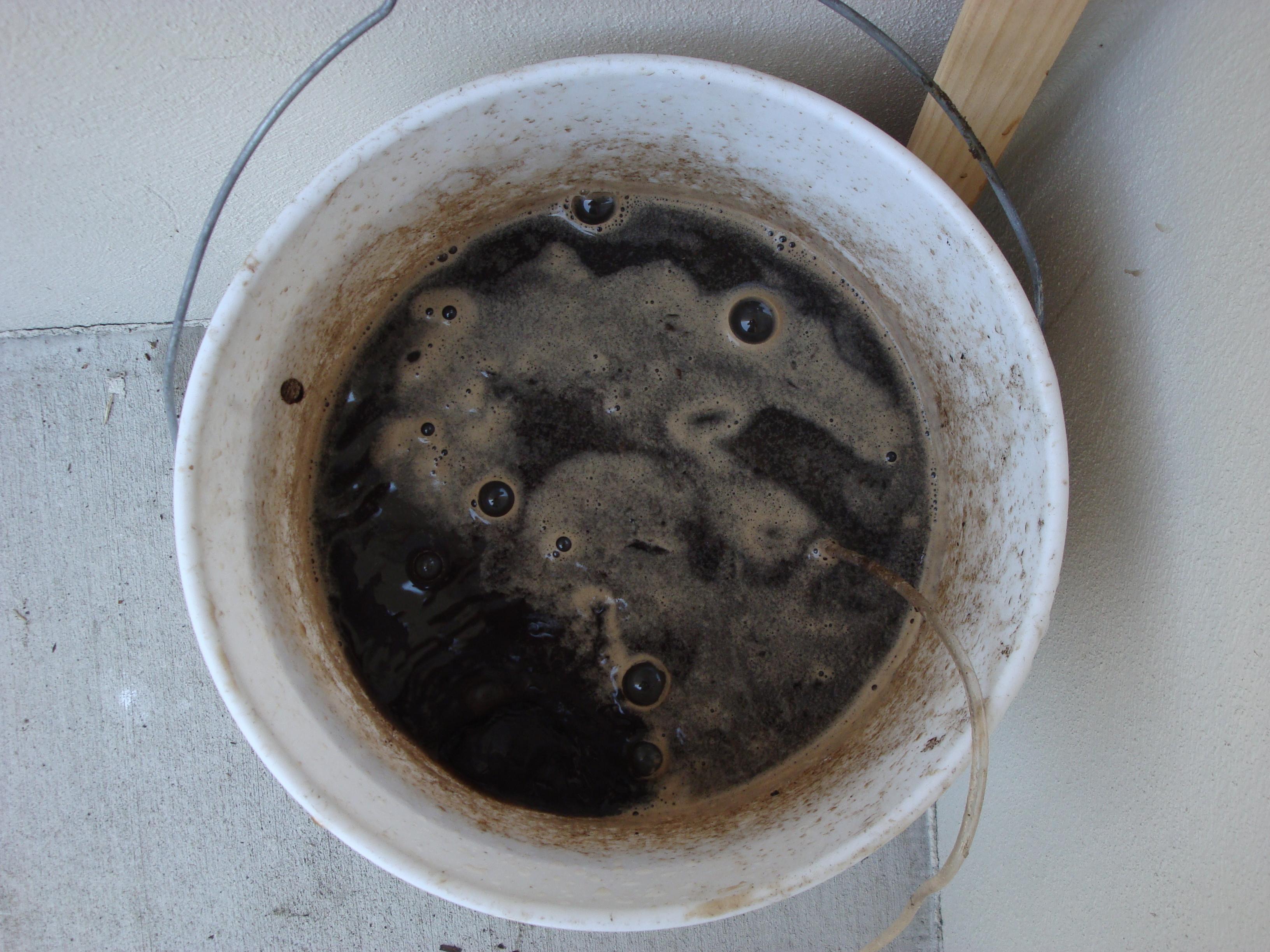 Making Compost Tea