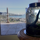 How to Make a Jarrarium