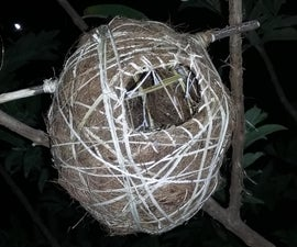 100 % Eco Friendly Birds Nest
