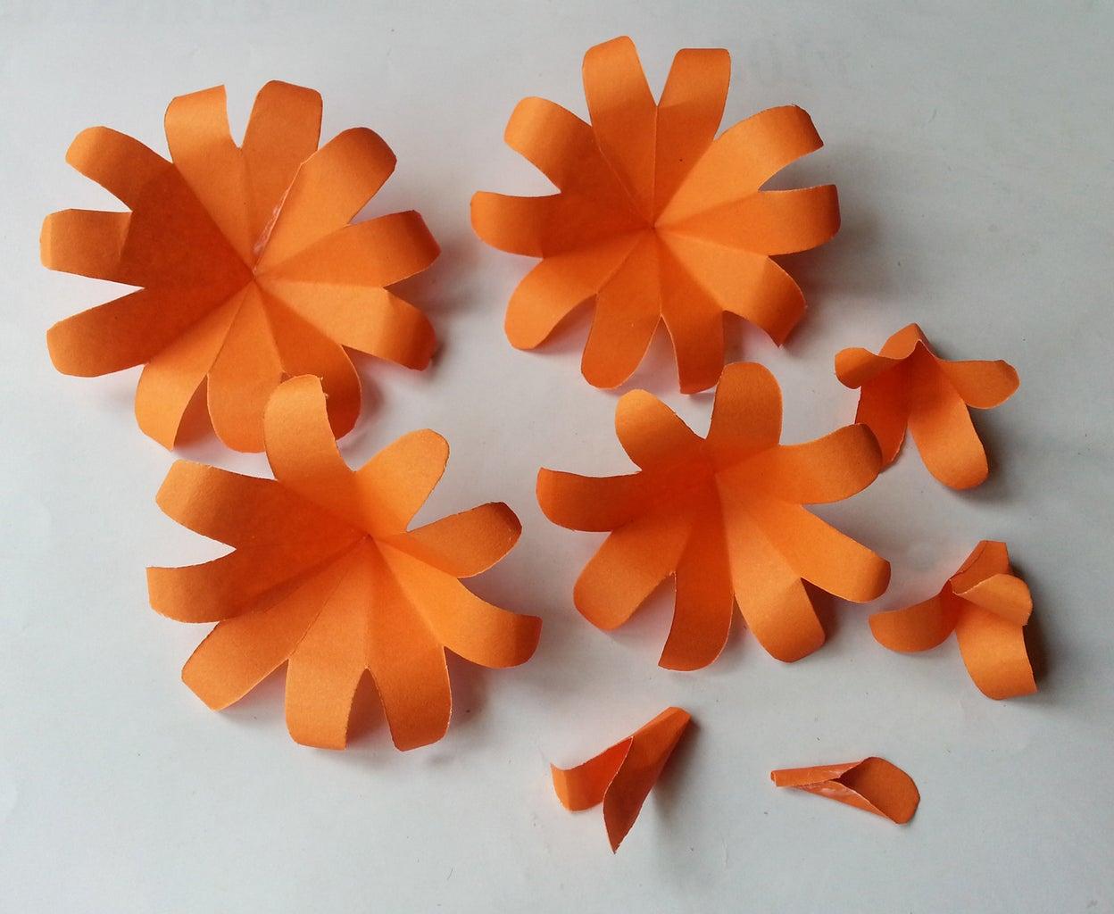 12 Petals