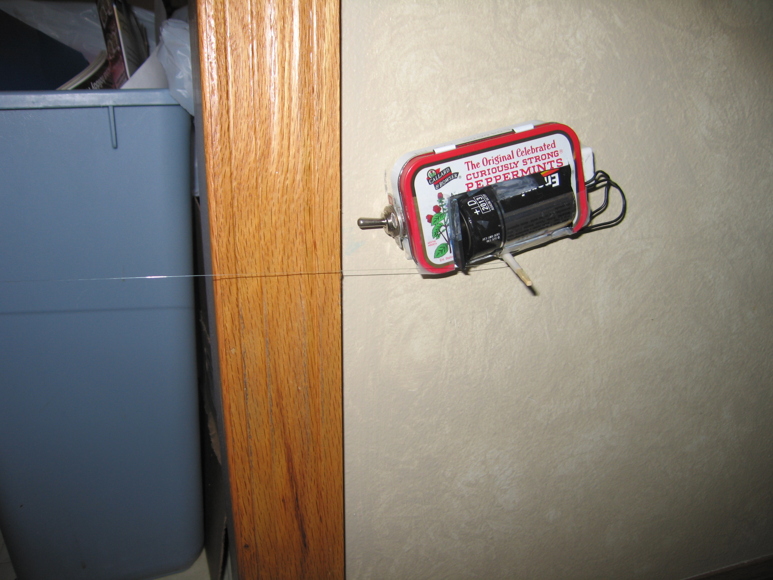 Portable tripwire