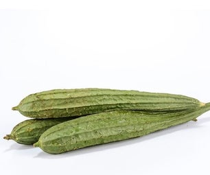 How to Grow Luffa From Seeds