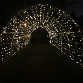 Holiday Light Tunnel