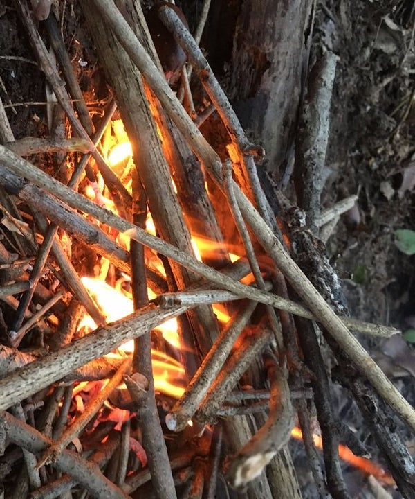 Building Campfires the Right Way (without Fire Starters or Dangerous Accelerants)