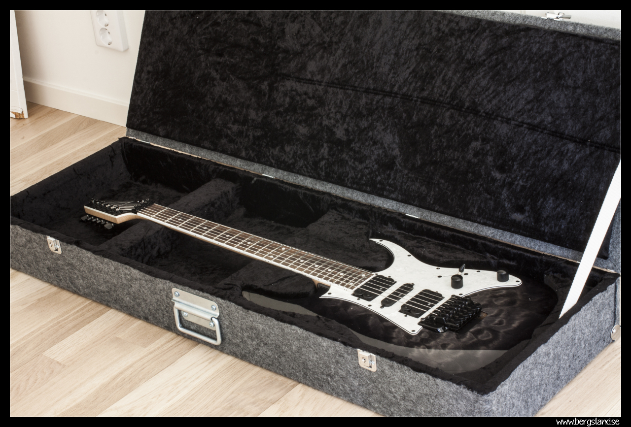 Guitar case (MDF and styrofoam)