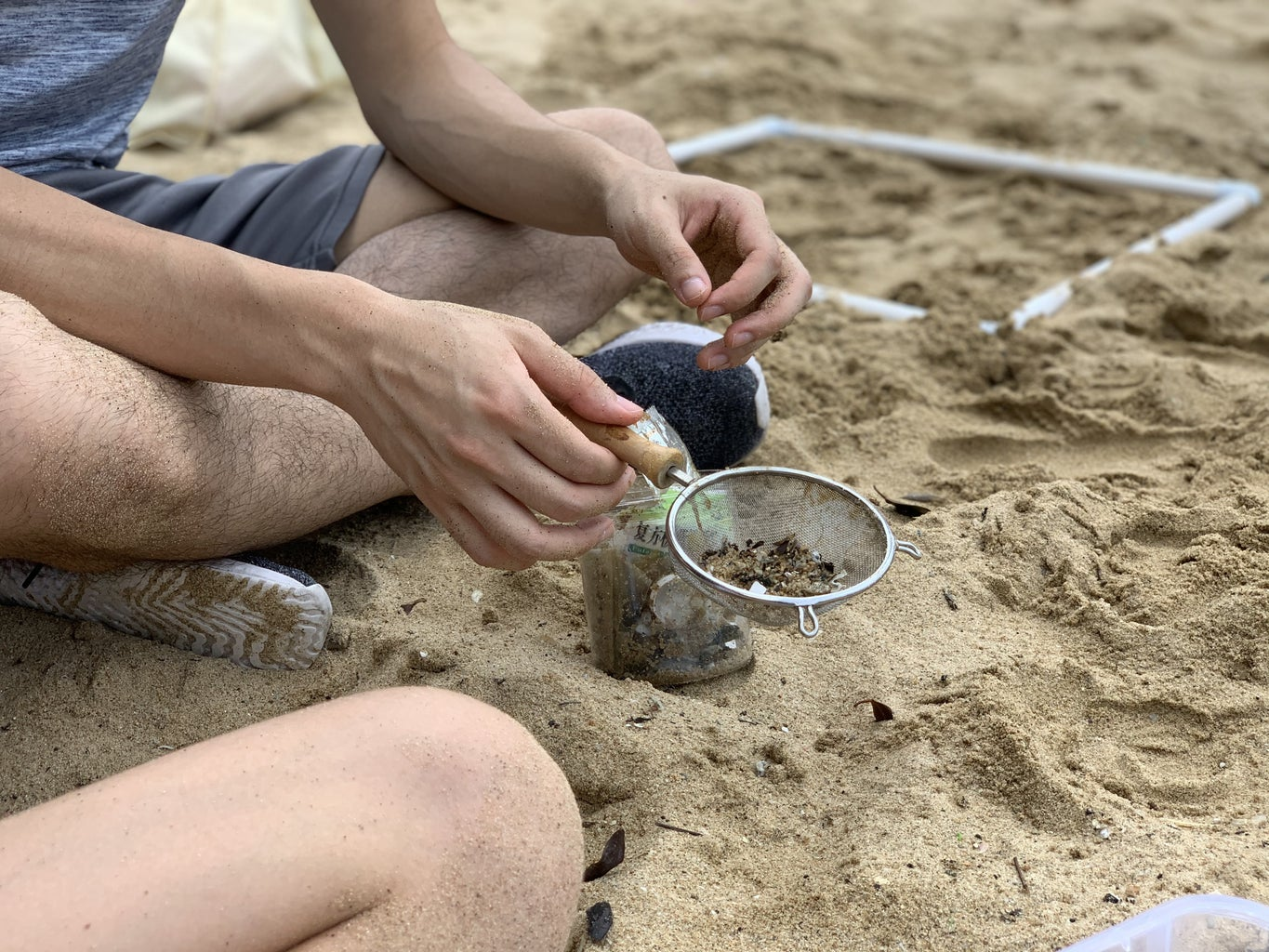 Beach Cleanup and Analysis