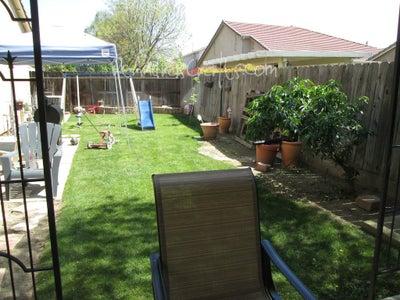 My Backyard & Experience