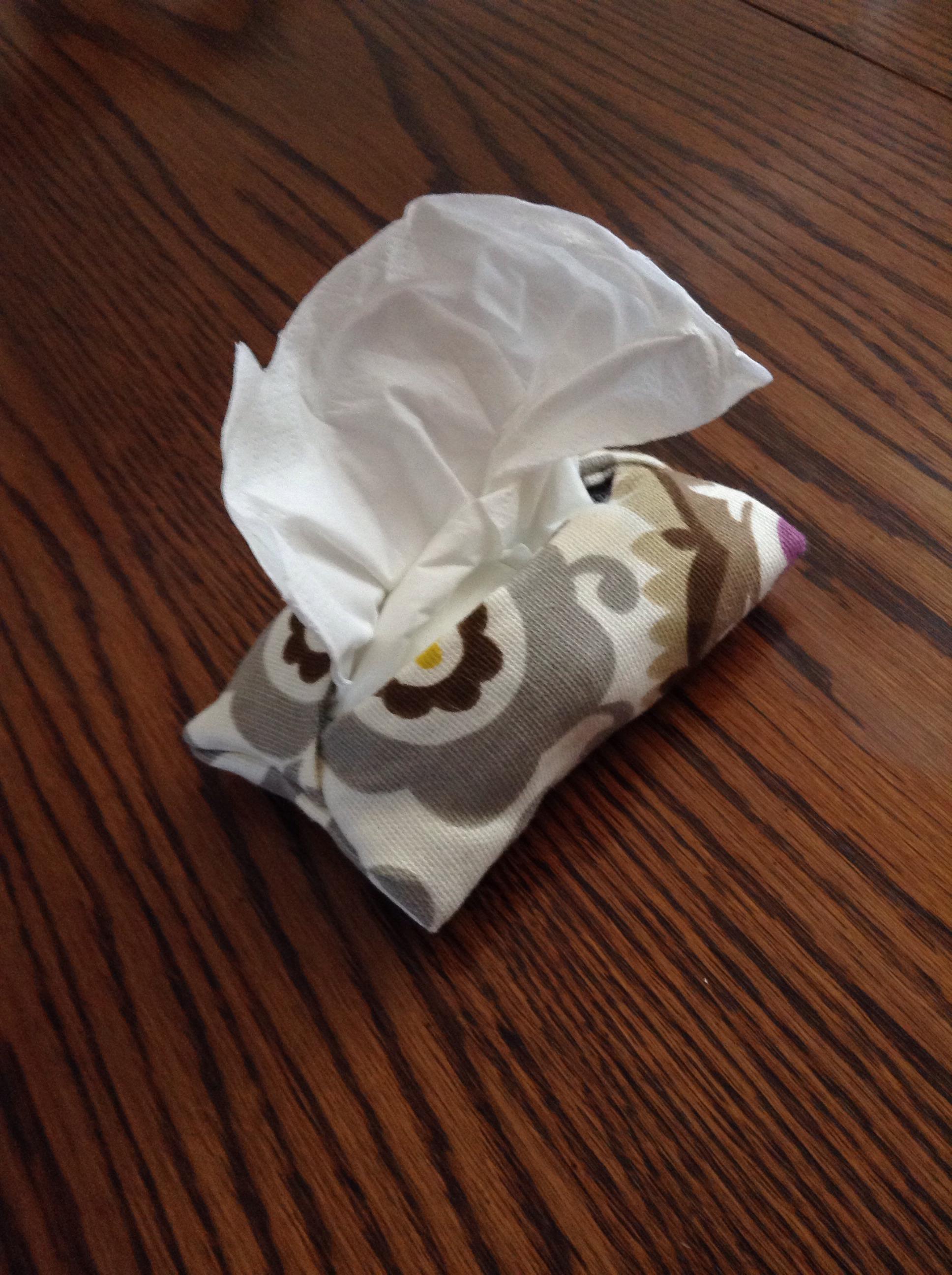 Diy Tissue Holder (or Phone Case)