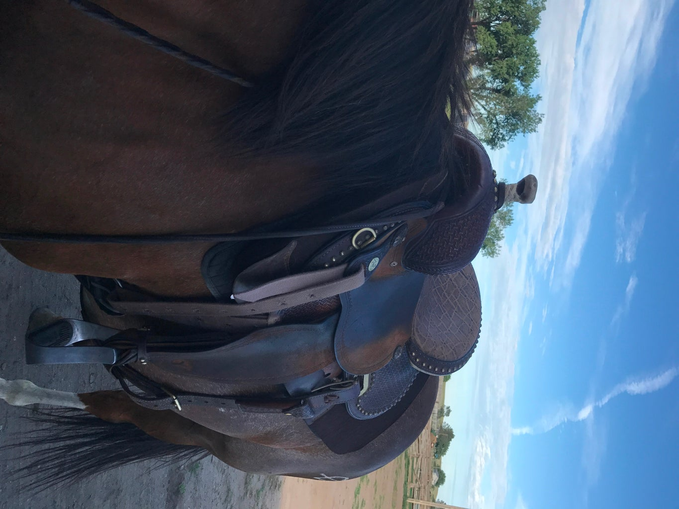 How to Saddle a Horse
