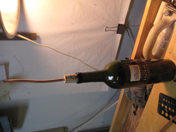 The 35-cent Wine Bottle Plant Waterer