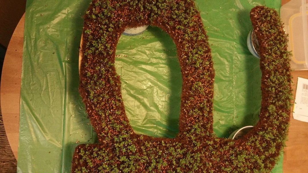 Add Plants and Wait - Cress Letter