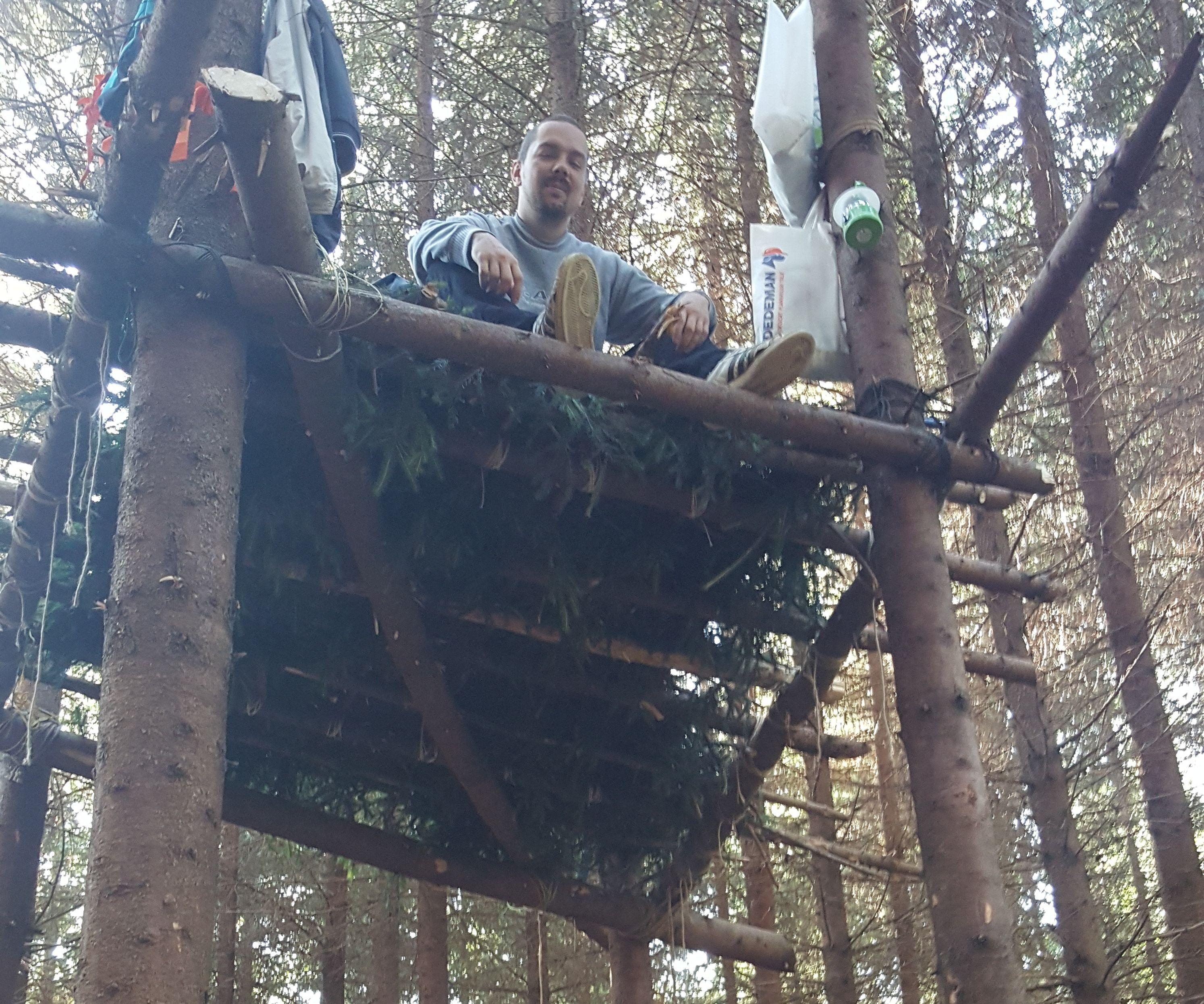 Tree platform
