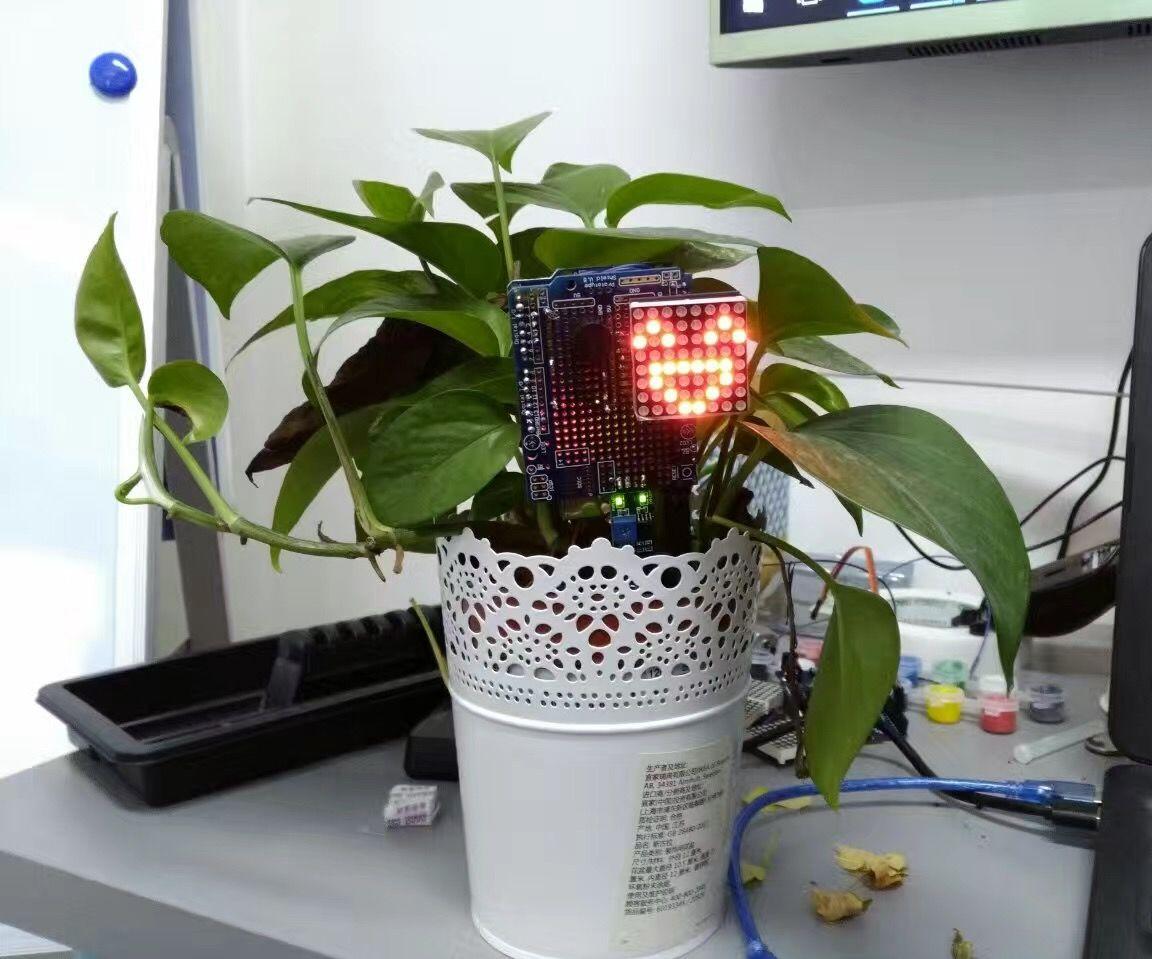 Plant Emoji