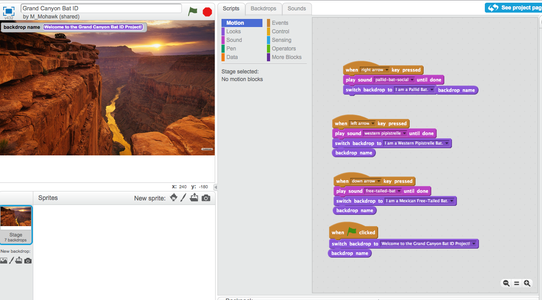 Use Scratch to Set Up the MakeyMakey Actions.