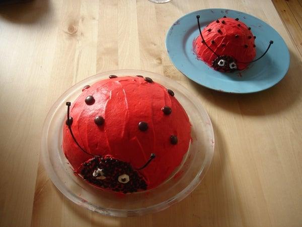 Ladybug and Babybug