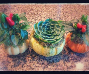 Fall Pumpkin Centerpiece/ Planters/ Gift
