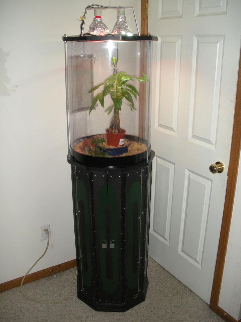 Nonagon Cabinet with Gecko Habitat