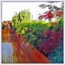 Rooftop Garden Design: Ohm Sweet Ohm