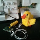 Internet of Ducks