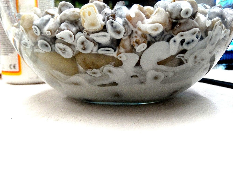 Put Pebbles Into Bowl