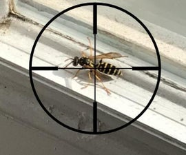 Kill a Wasp Inside Your Home