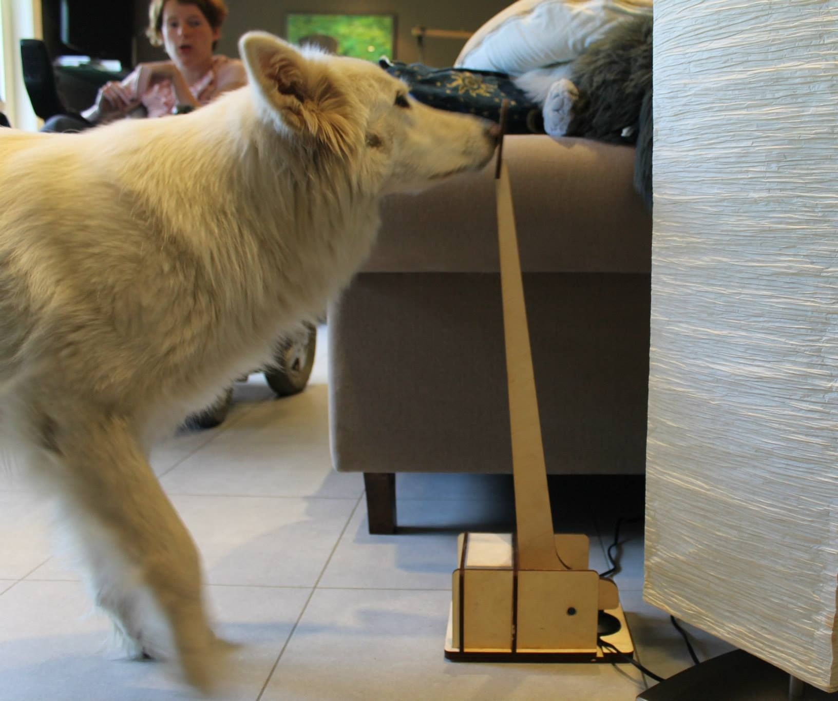 DIY lamp switch for dogs