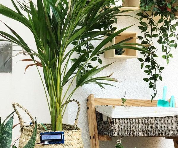 Garduino – the Smart Garden With Arduino