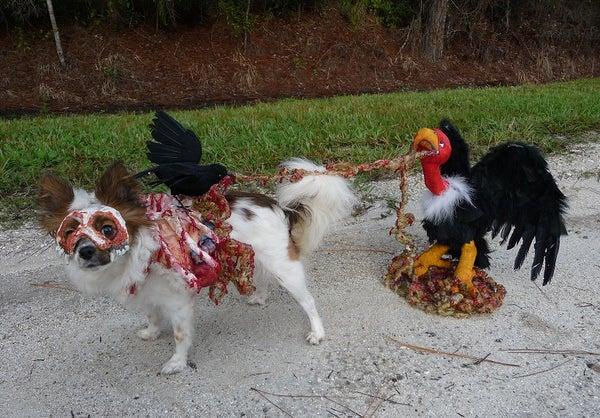 """""""Roadkill Zombie Dog"""""""