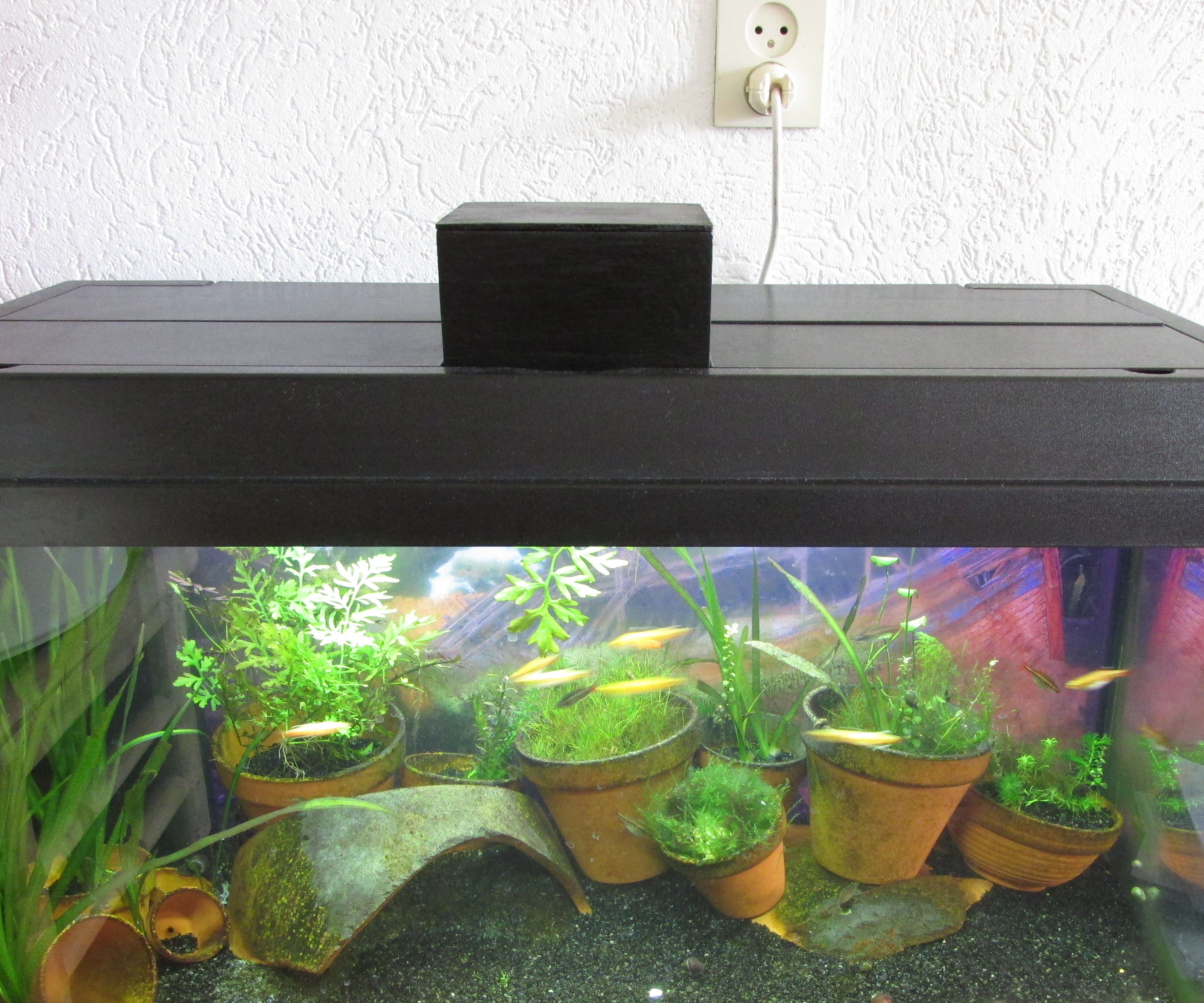 Fish Feeder Arduino Raspberry Pi link