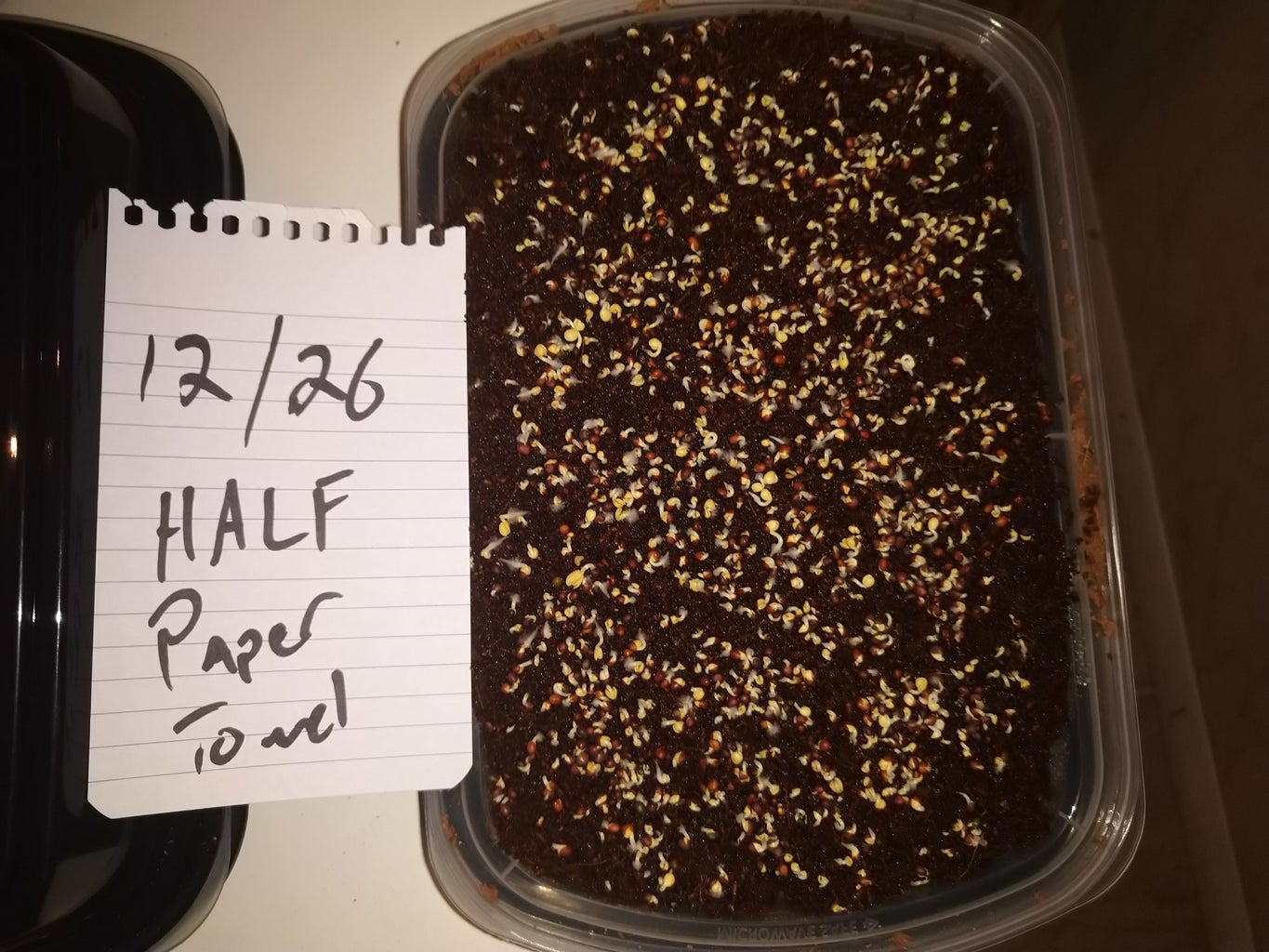 *Experimental* Harvest 100's of Self Watering Microgreen Trays Under $60