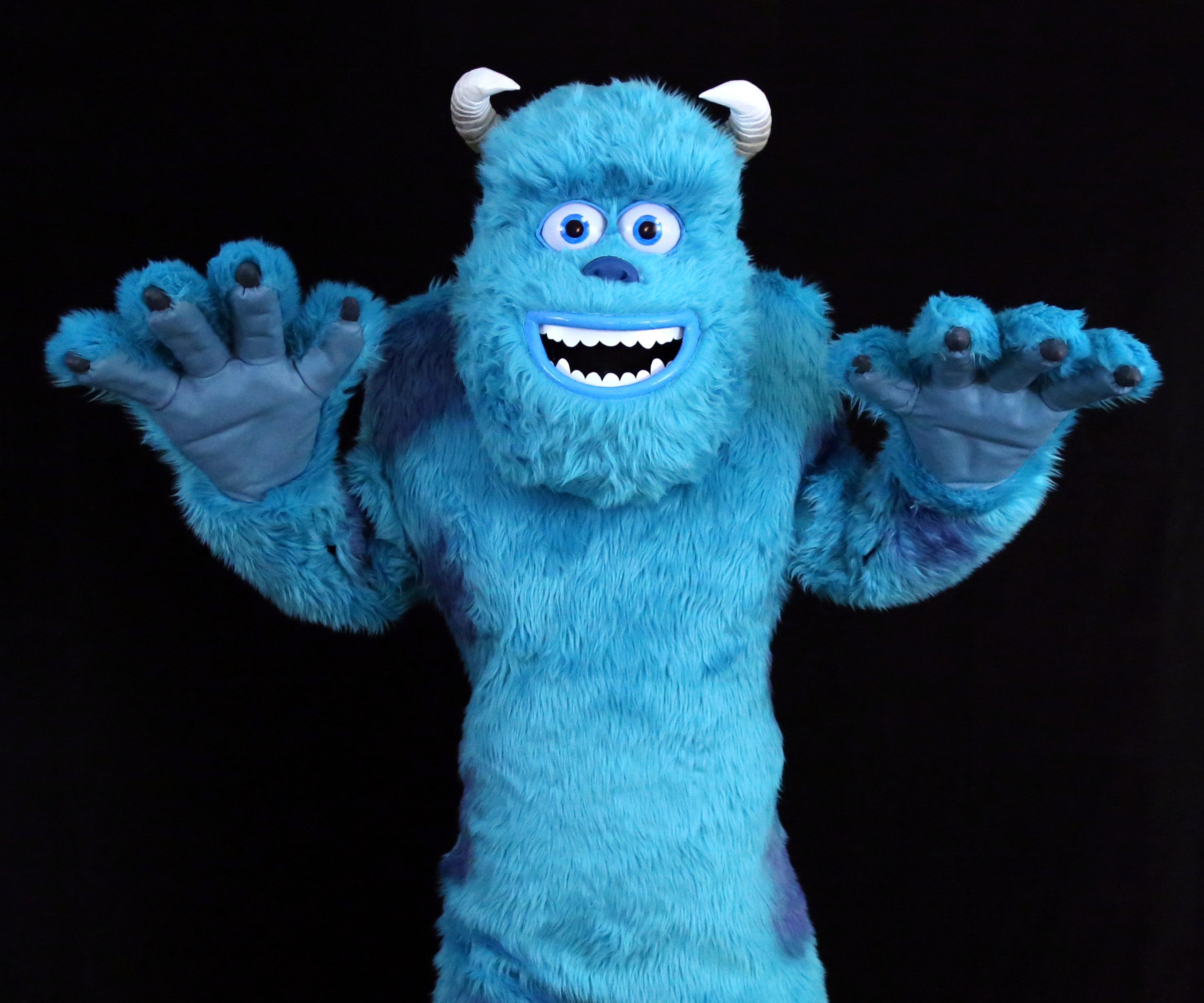 Sully From Monsters Inc