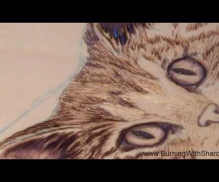 Pyrography: How to Woodburn a Realistic Cat Nose