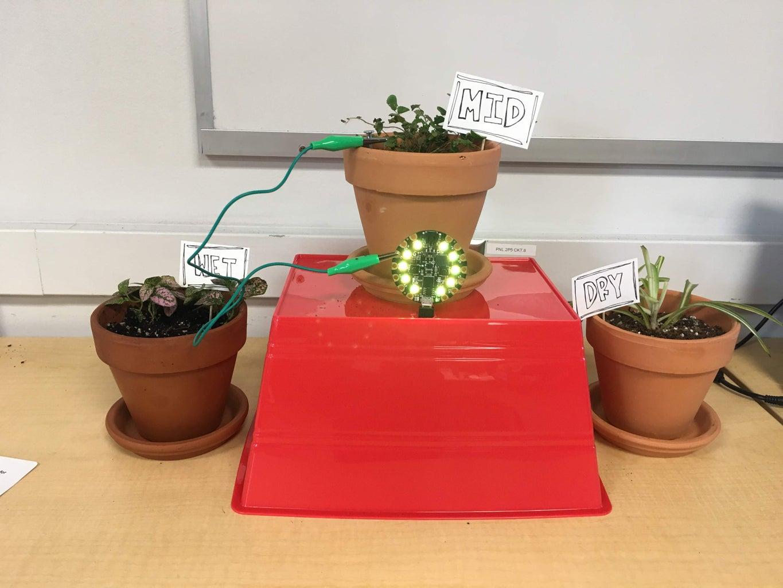 Soil Moisture Detecting Pot for House Plants