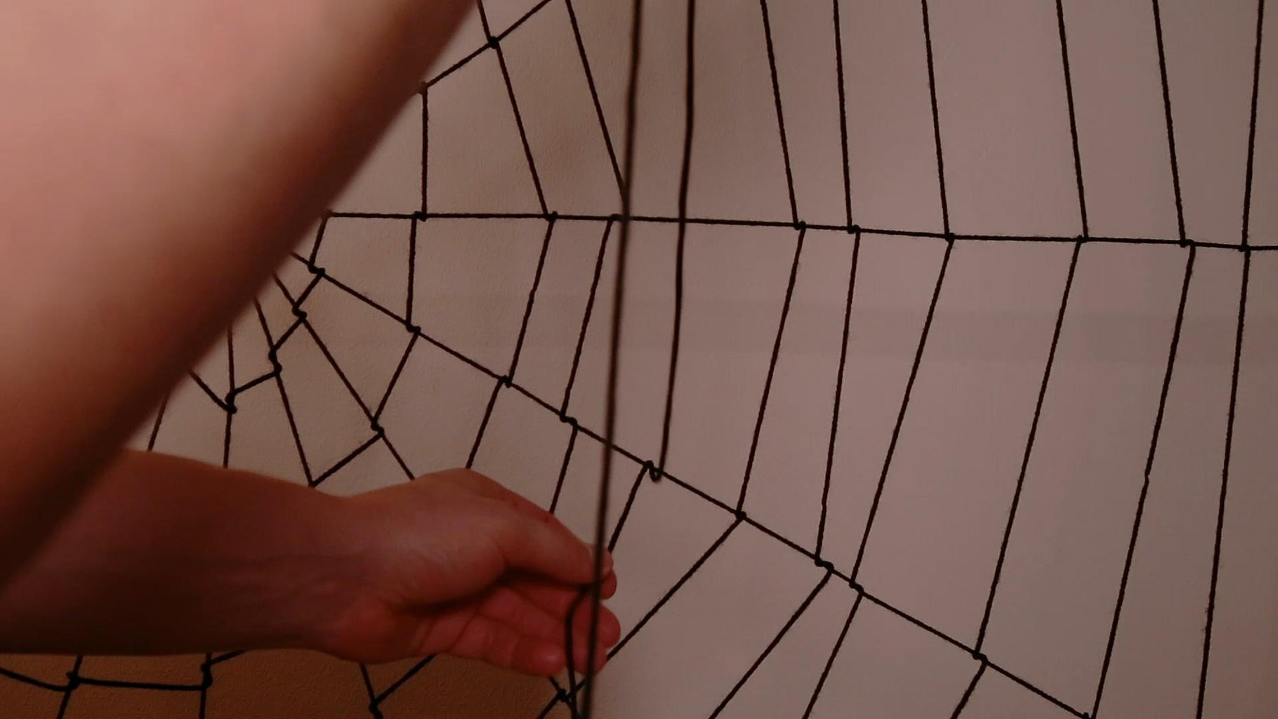Spider Web Capture Spiral