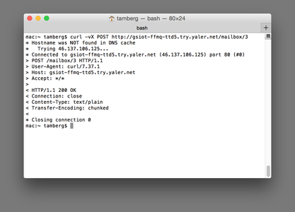 Testing the Arduino Web Service With Curl