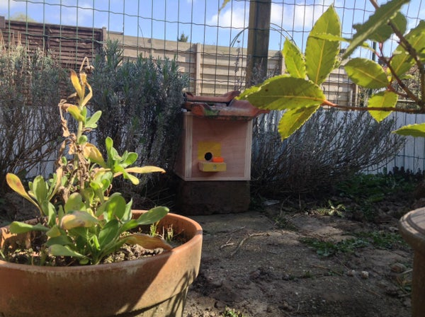 Build a Nest Box for Bumblebees