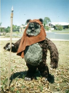 Ewoks Costume  for My Son Home Made