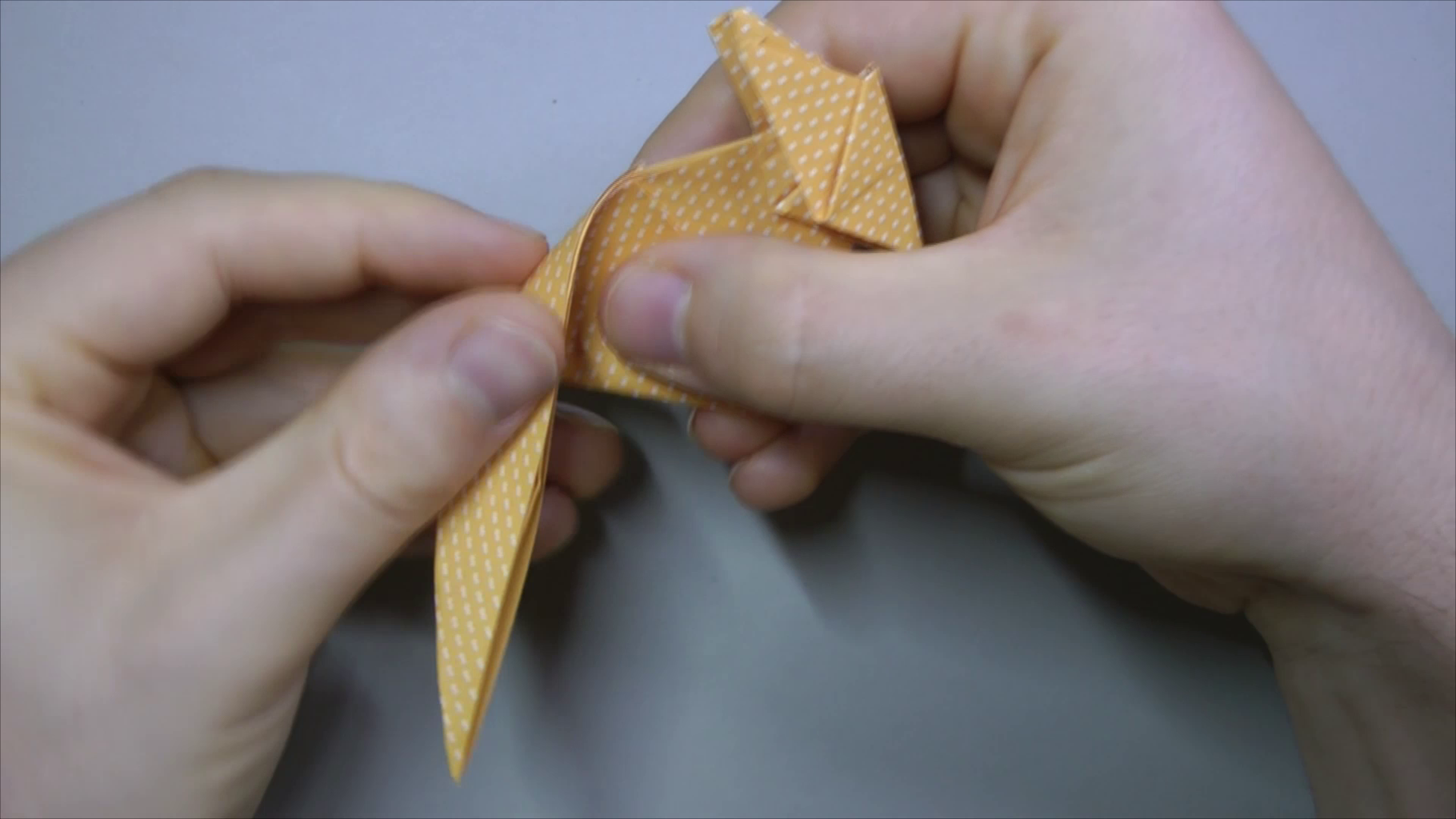 Inside Reverse Fold Tail