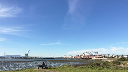 Exploring Oakland - Three Methodologies