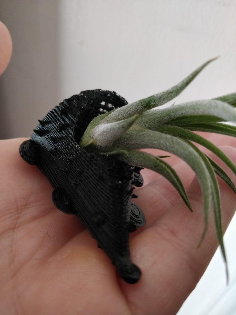 Hedgehog Planter on Tinkercad