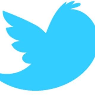 twitter bird.jpg