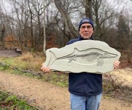 Ichthyosaur化石