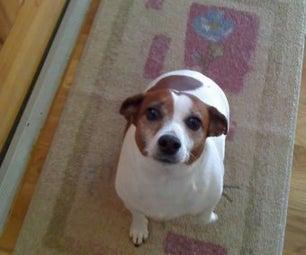 Doggie Doorbell